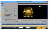 SolveigMM Video Splitter Business Edition 5.0.1506.19
