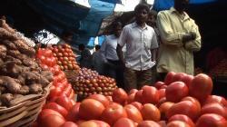 Золотой Глобус: Индия (2010) BDRip AVC