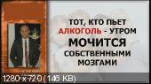 Стоп никотин + Стоп алкоголь (2013) Видеокурс