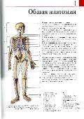 Й. В. Роен и др. Большой анатомический атлас (2015) PDF