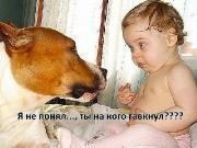Фотоподборка '220V' 26.05.15