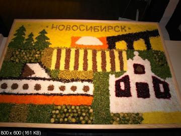 http://i69.fastpic.ru/thumb/2015/0610/74/01240d6fea78122c5fb1090ecf179f74.jpeg