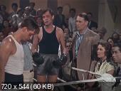 Запасной игрок (1954) DVDRip от GeneralFilm