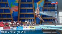 ��������� ����. ������ � ����. �������. ��������, 3 �. ���������� ������. ����� [28.07] (2015) HDTV 1080i