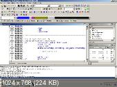 Видеокурс программиста и крэкера eXeLaB 3D (2015) PCRec