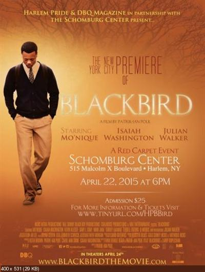 Blackbird (2014) WEB-DL x264-ROOR
